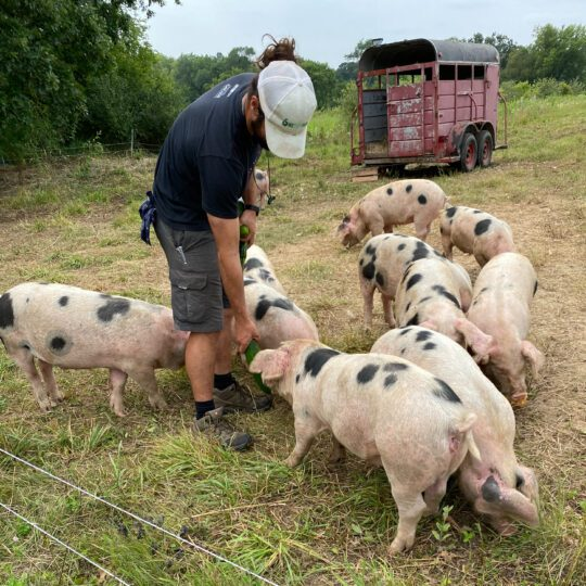 Pork Bundle – Small
